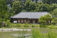 浄瑠璃寺庭園と本堂