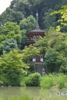 浄瑠璃寺庭園と三重塔