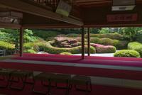 大池寺蓬莱庭園とサツキ(遠景)