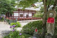 矢田寺本堂とお地蔵さんとアジサイ