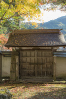 室生寺の木戸と紅葉