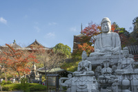 壷阪寺,大仏と紅葉