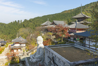 壷阪寺,境内と紅葉