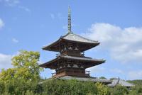 法起寺 02698000186  写真素材・ストックフォト・画像・イラスト素材 アマナイメージズ