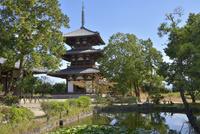 法起寺三重塔と境内 02698000188  写真素材・ストックフォト・画像・イラスト素材 アマナイメージズ