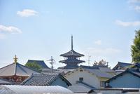 斑鳩の里と法隆寺
