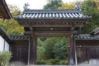 正暦寺,福寿院客殿の門 02698000195  写真素材・ストックフォト・画像・イラスト素材 アマナイメージズ