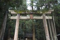 室生龍穴神社,鳥居