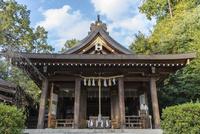 飛鳥坐神社 02698000205  写真素材・ストックフォト・画像・イラスト素材 アマナイメージズ