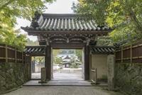 奈良,圓照寺 02698000206  写真素材・ストックフォト・画像・イラスト素材 アマナイメージズ