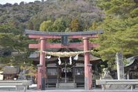 白鬚神社本殿