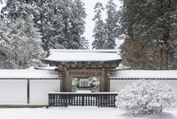 雪の比叡山延暦寺 浄土院