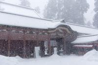 雪の比叡山延暦寺 雪降る根本中堂