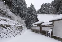 雪の比叡山延暦寺 浄土院から西塔へ続く道