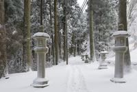 雪の比叡山延暦寺 東塔〜西塔間の山道