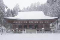 雪の比叡山延暦寺 釈迦堂(転法輪堂)