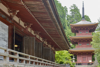 長命寺三重塔と本堂