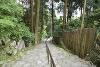長命寺山門から見た参道(808段の石段)