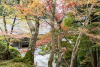 瓦屋寺の庫裏と紅葉 02698000261  写真素材・ストックフォト・画像・イラスト素材 アマナイメージズ
