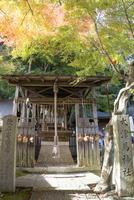 馬神神社,大津馬神社 02698000269  写真素材・ストックフォト・画像・イラスト素材 アマナイメージズ