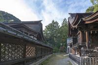 三尾神社本殿(写真左)と境内 02698000272  写真素材・ストックフォト・画像・イラスト素材 アマナイメージズ