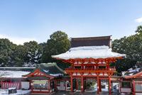 近江神宮 02698000289  写真素材・ストックフォト・画像・イラスト素材 アマナイメージズ