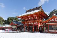 雪の近江神宮楼門 02698000299  写真素材・ストックフォト・画像・イラスト素材 アマナイメージズ