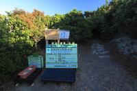 森林生態系保護地域 父島