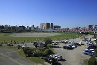 六郷土手の多摩川緑地のゴルフ練習場