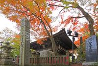 高尾山薬王院の四天王門と紅葉