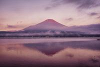 山中湖に映る早朝の赤富士 02702000034| 写真素材・ストックフォト・画像・イラスト素材|アマナイメージズ