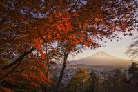 真紅の紅葉と夕方の富士山 02702000050| 写真素材・ストックフォト・画像・イラスト素材|アマナイメージズ