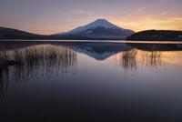 山中湖に映り込む日の入り後の富士山