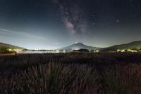 河口湖より望む夜の富士山と天の川とラベンダー畑