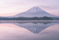 精進湖より望む朝焼けの富士山