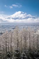 新倉浅間公園より望む富士山と雪景色