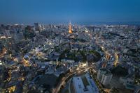 東京タワーを中心にしたブルーアワーの東京の夜景 02702000083| 写真素材・ストックフォト・画像・イラスト素材|アマナイメージズ