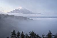 林道より望む雲間から現れた雲海越しの富士山