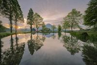 キャンプ場の池に映り込む新緑と富士山
