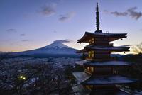 富士吉田市新倉浅間公園より望む冬富士と五重塔の冬景色