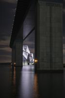 若洲海浜公園より望む夜の東京ゲートブリッジ