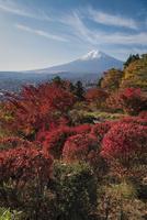 富士見孝徳公園より望む紅葉と富士山