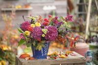 ブルーのブリキのバケツに生けたピンクのアジサイと紅葉の枝 02705000075| 写真素材・ストックフォト・画像・イラスト素材|アマナイメージズ