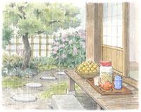 梅雨の民家の軒先 梅漬け 水彩イラスト 02723000011| 写真素材・ストックフォト・画像・イラスト素材|アマナイメージズ