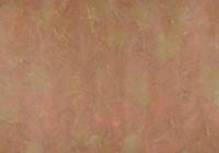 地模様のテキスタイルデザイン 02724000162| 写真素材・ストックフォト・画像・イラスト素材|アマナイメージズ