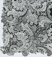 ペイズリーテキスタイルデザイン,図柄 02724000201| 写真素材・ストックフォト・画像・イラスト素材|アマナイメージズ