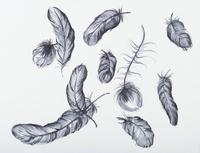 羽のテキスタイル