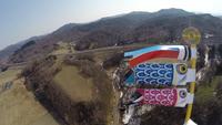 空を昇る鯉のぼり 風船によって空撮