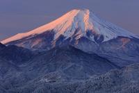 岩殿山より紅富士を望む