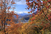 岩殿山より紅葉と富士山を望む